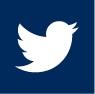 Twitter - Blue